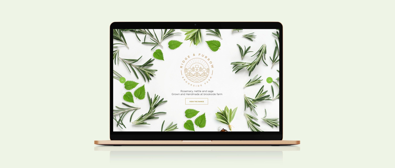 web design, UI, UX, design agency, leamington spa, graphic design warwickshire, creative agency warwick, littlefish, design agency leamington spa, midlands creative agency