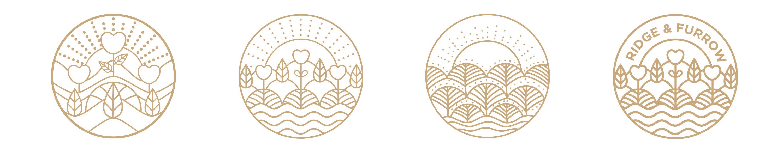 logo design, logo development, design agency, leamington spa, graphic design warwickshire, creative agency warwick, littlefish, design agency leamington spa, midlands creative agency