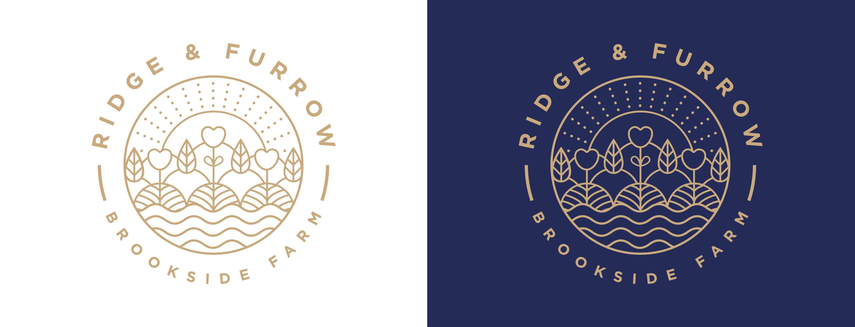 logo design, branding, leamington spa, graphic design warwickshire, creative agency warwick, littlefish, design agency leamington spa, midlands creative agency